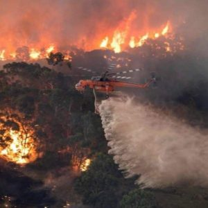 Bushfires in Australia: Causes, damages and suffering 1