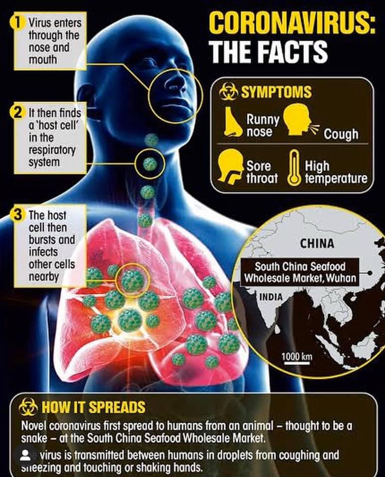 Recently found coronavirus