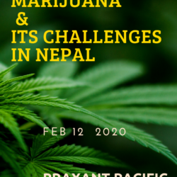 Legalizing Marijuana And It's Challenges In Nepal. 11
