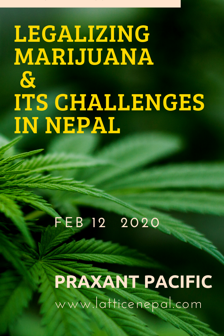Legalizing Marijuana And It's Challenges In Nepal. 1